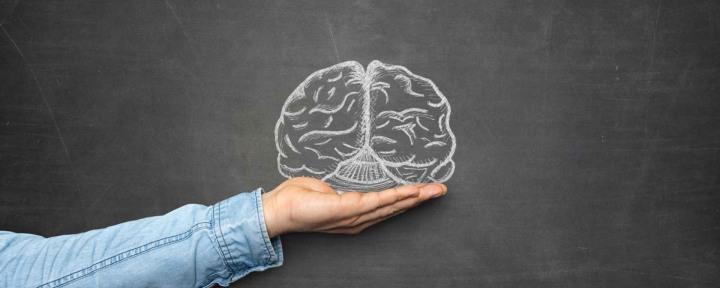 Somos-nuestro-cerebro